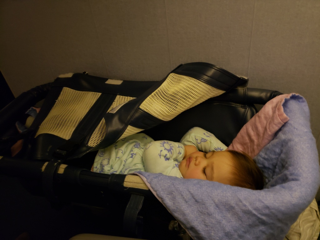 All Nippon Airlines Baby Bassinet